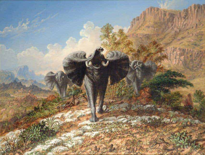 Elephants Charging over Quartos Country – Thomas Baines