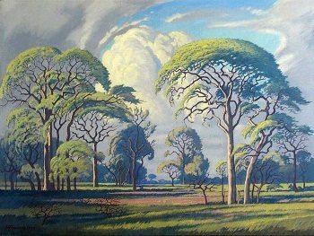 Beauty in Art depicted by Hardkoolbome – Bosveld