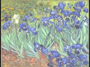 Impressionism art depicted by Irises