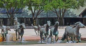 Mustangs at Las Colinas By Robert Glen